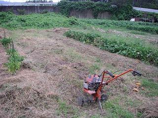 畑の土づくり.jpg