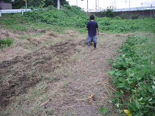 畑を耕す.jpg