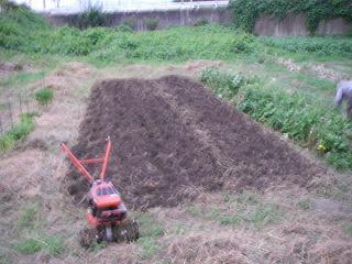 秋冬野菜用に畑の土づくり.jpg