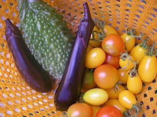 無農薬の夏野菜.jpg
