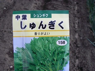 春菊の種.jpg